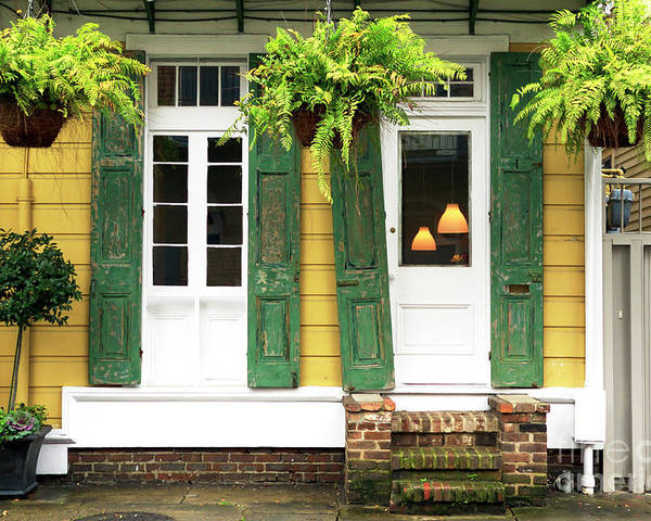 New Orleans Row House Plants Poster featuring the photograph New Orleans Row House Plants by John Rizzuto