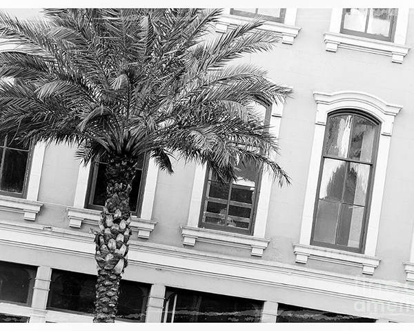 Windows Poster featuring the photograph New Orleans Windows - Black And White by Carol Groenen