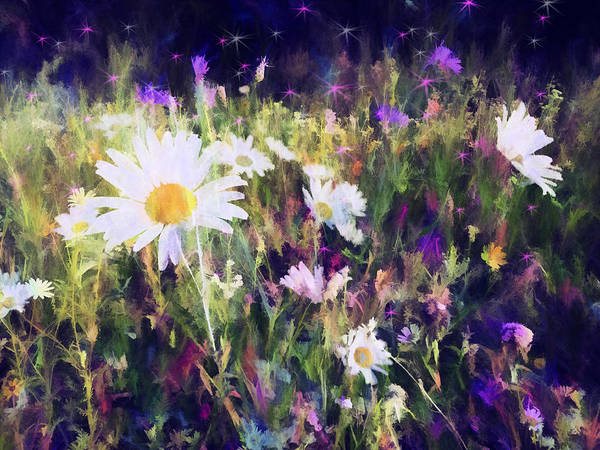 Flowers Poster featuring the photograph New York Wildflowers Xxv by Tina Baxter