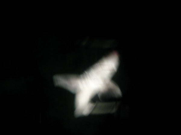 Shark Poster featuring the photograph Night Shark by Jess Thorsen