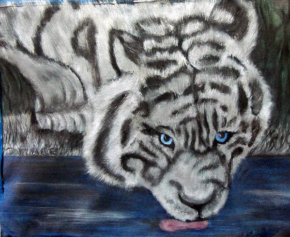 Whiter Tiger Poster featuring the painting Night Sipper Metallic Paints by Darlene Green