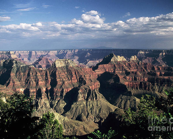 Grand Canyon; National Parks Poster featuring the photograph North Rim by Kathy McClure