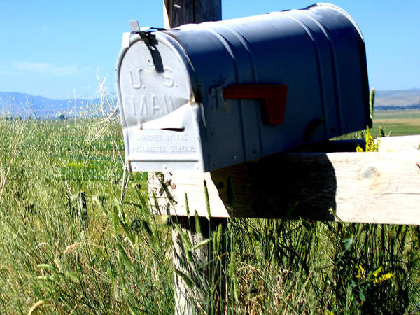 Mailbox Poster featuring the photograph Note For You by Diane Wallace