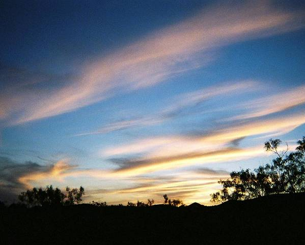 Mesquite Poster featuring the photograph November Sunset by Ana Villaronga