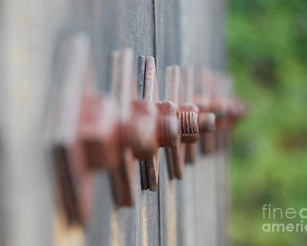 Nuts And Bolts Poster featuring the photograph Nuts And Bolts by Lori Leigh