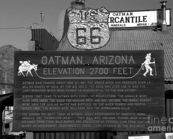Oatman Arizona Poster featuring the photograph Oatman Arizona by David Lee Thompson