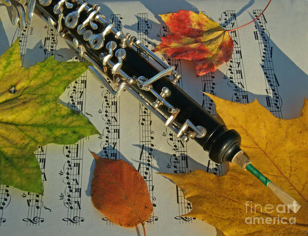 Oboe Poster featuring the photograph Oboe And Sheet Music On Autumn Afternoon by Anna Lisa Yoder