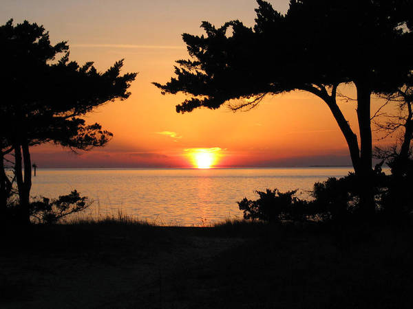 Ocracoke Poster featuring the photograph Ocracoke Island Winter Sunset by Wayne Potrafka