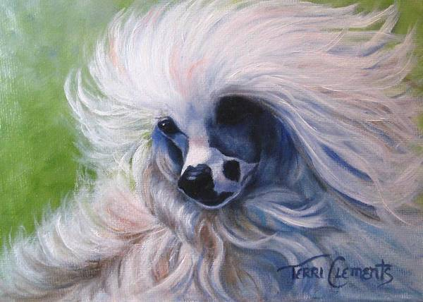 Dog Poster featuring the painting Odin In The Breeze by Terri Clements