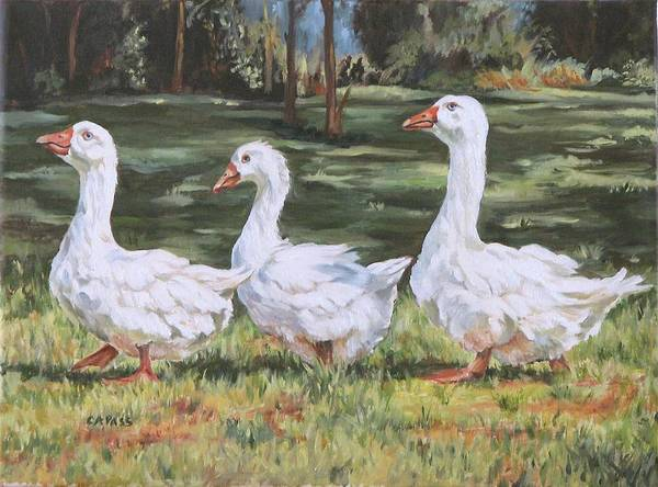 Ducks Poster featuring the painting Off To The Pond by Cheryl Pass