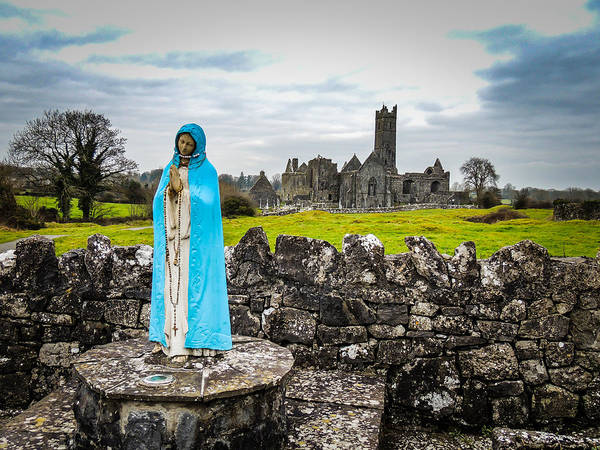 15th Century Poster featuring the photograph Official Greeter At Ireland's Quin Abbey National Monument by James Truett