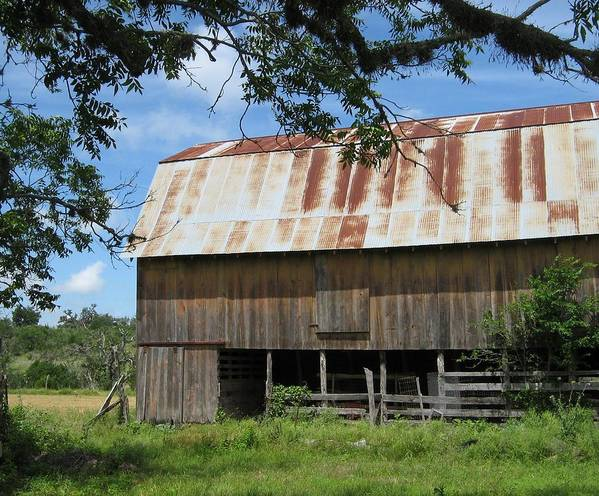 Barn Poster featuring the photograph Old Barn 1 by Rebecca Shupp