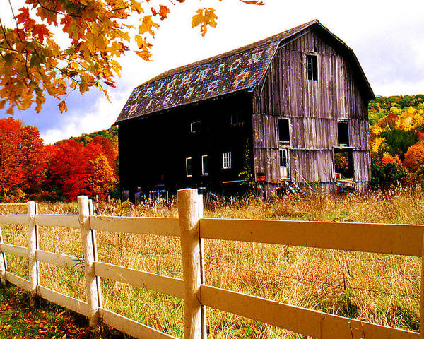 Rural Poster featuring the photograph Old Barn In Autumn by Roger Soule