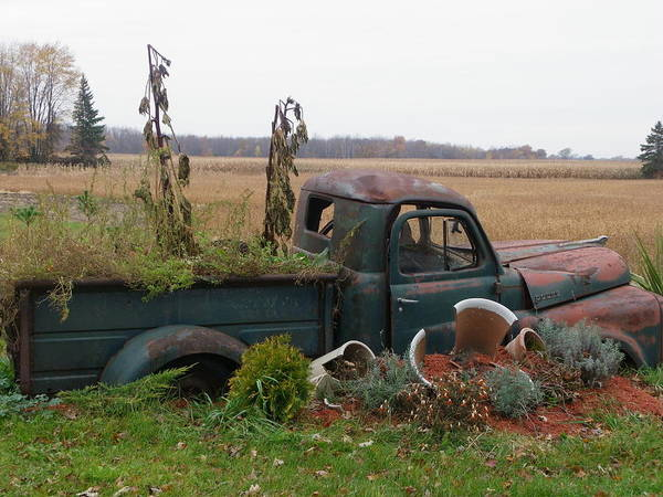 Landscape Poster featuring the photograph Old Dodge New Job by Peggy King