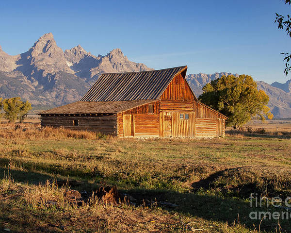 Jackson Hole Poster featuring the photograph Old Mormon Farm by Bob Phillips