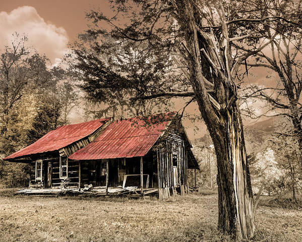 Appalachia Poster featuring the photograph Old Mountain Cabin by Debra and Dave Vanderlaan