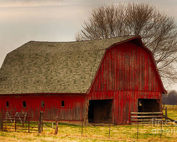 Farm Poster featuring the photograph Old Red Barn by Terri Morris