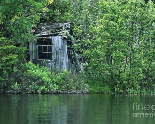 Shed Poster featuring the photograph Old Shed On The Lake by Marjorie Imbeau