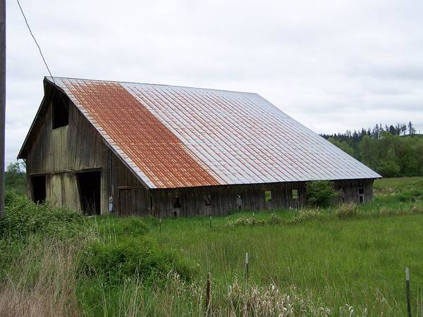 Barn Poster featuring the photograph Old Tin Roof Barn Washington State by Laurie Kidd