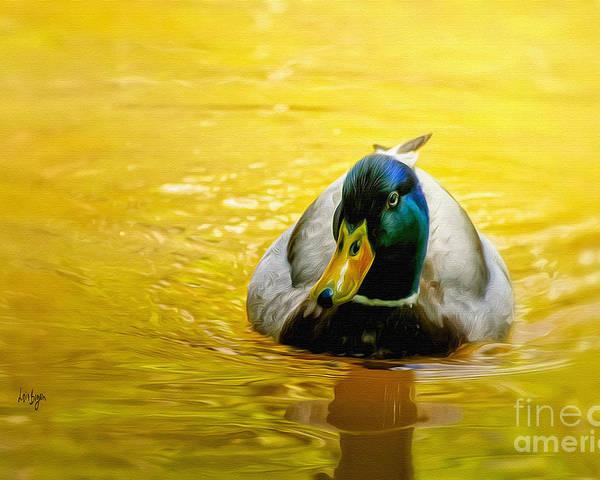 Mallard Poster featuring the digital art On Golden Pond by Lois Bryan