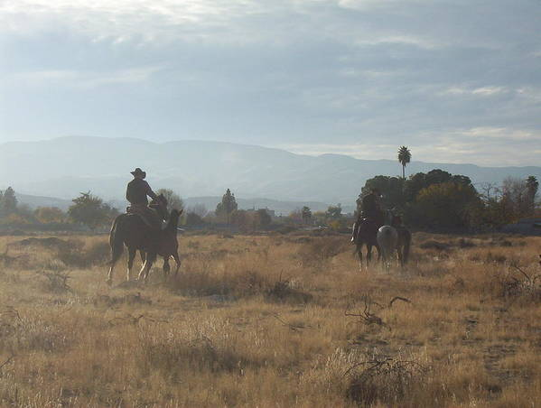 Western Poster featuring the photograph On The Range by Janey Loree