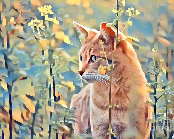 Animal Poster featuring the photograph Orange Cat In Field Of Yellow Flowers by Tarisa Smith