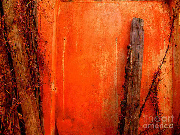 Michael Fitzpatrick Poster featuring the photograph Orange Wall By Michael Fitzpatrick by Mexicolors Art Photography
