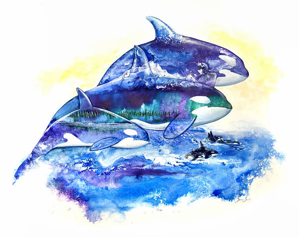 Orca Poster featuring the painting Orca Fantasy by Sherry Shipley