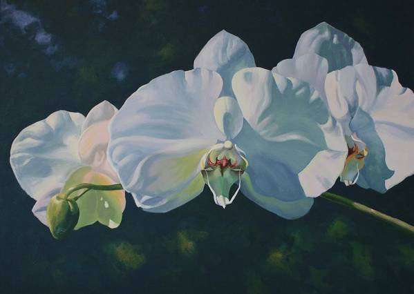 Acrylic On Canvas Poster featuring the painting Orchid Song by Michael Vires