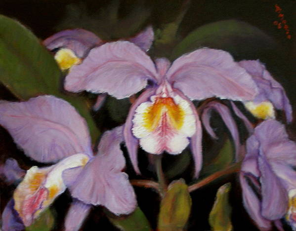 Realism Poster featuring the painting Orchids by Donelli DiMaria