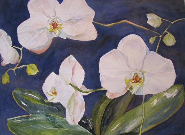 Orchids. Blue Poster featuring the painting Orchids by Nancy Henkel Schulte
