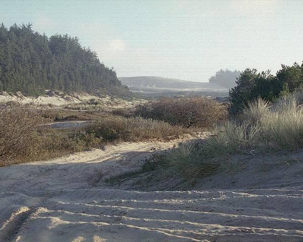Oregon Dunes National Recreation Area Poster featuring the photograph Oregon Dunes 5 by Eike Kistenmacher
