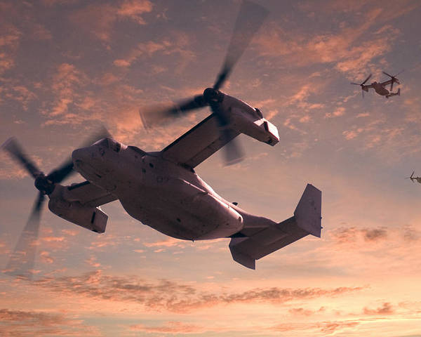 Osprey Poster featuring the relief Ospreys In Flight by Mike McGlothlen