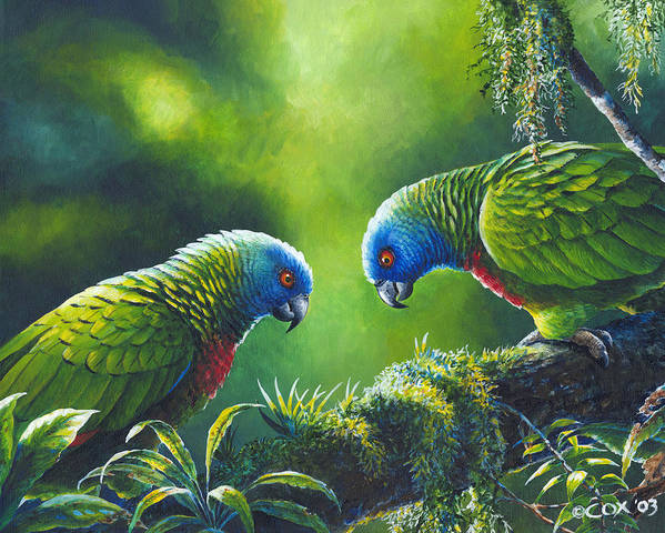Chris Cox Poster featuring the painting Out On A Limb - St. Lucia Parrots by Christopher Cox