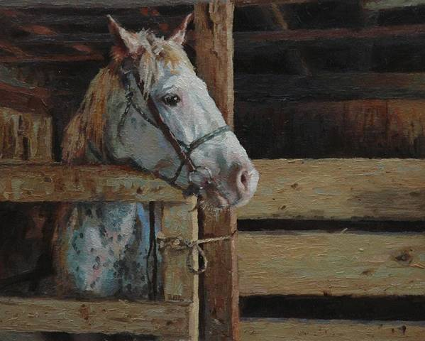 Horse Poster featuring the painting Outdoor Girl by Jim Clements