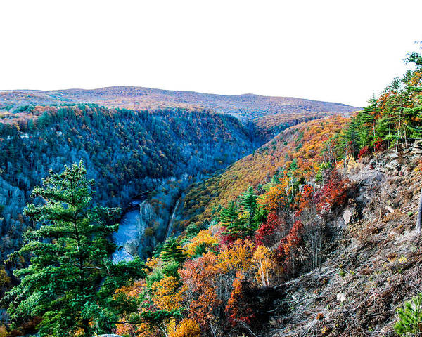 Grand Canyon Of Pennsylvania Poster featuring the photograph Pa Grand Canyon by Dmitriy Laria