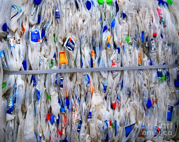 Plastic Poster featuring the photograph Packed Plastic by Nareeta Martin