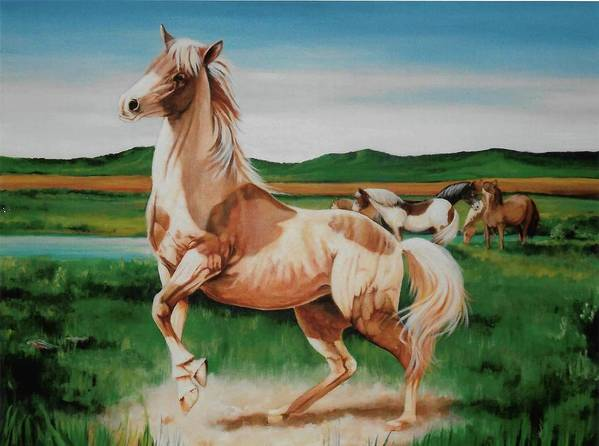 Horse Paintings Poster featuring the painting Paint by DC Houle