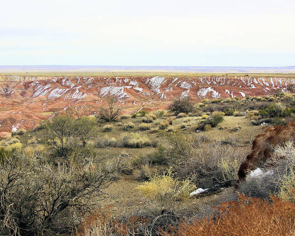 Photography Poster featuring the photograph Painted Desert Winter 0571 by Sharon Broucek