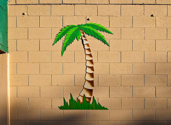 Palm Tree Poster featuring the photograph Palm Tree Sign by Rich Iwasaki