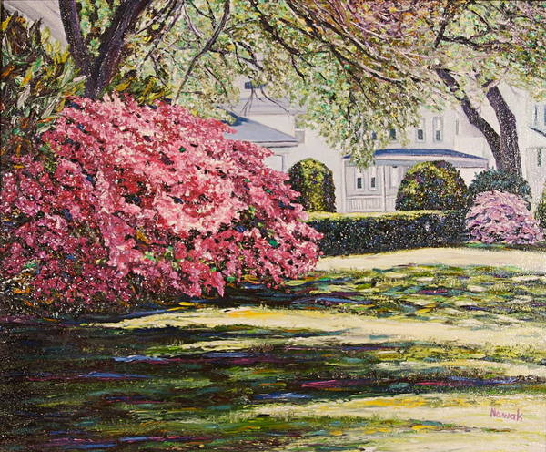 Park Poster featuring the painting Park Spring Blossom With Shadows by Richard Nowak