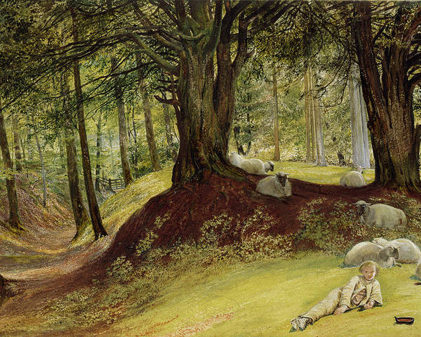 Parkhurst Poster featuring the painting Parkhurst Woods by Richard Redgrave