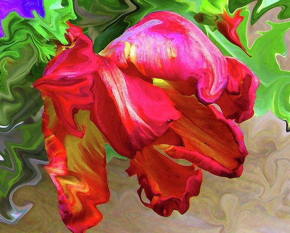 Abstract Poster featuring the photograph Parrot Tulip by Kathy Moll