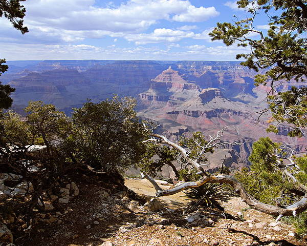 Grand Canyon National Park Poster featuring the photograph Partly Cloudy - Grand Canyon by Larry Ricker