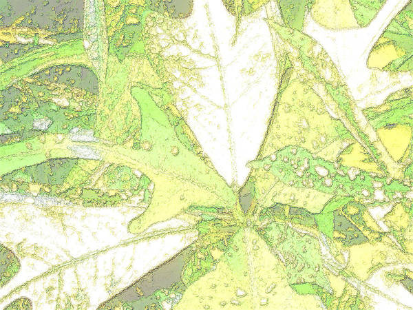 Leaves Poster featuring the digital art Pastel Green Nature by Rosalie Scanlon