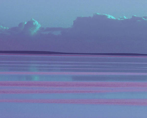 Sunset Poster featuring the photograph Pastel Sunset Sea Lilac by Tony Brown