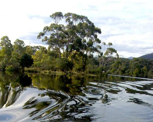Water River Trees Reflections Patterns Swirls Poster featuring the photograph Patterns On Water by Bethwyn Mills