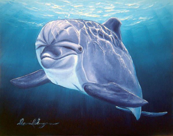 Dolphin Poster featuring the painting Peaceful Greeting by Daniel Bergren