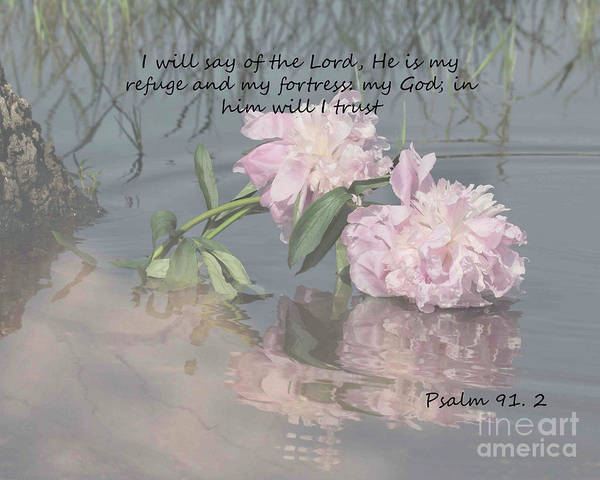 Flower Poster featuring the photograph Peonies With Psalm 91.2 by TN Fairey