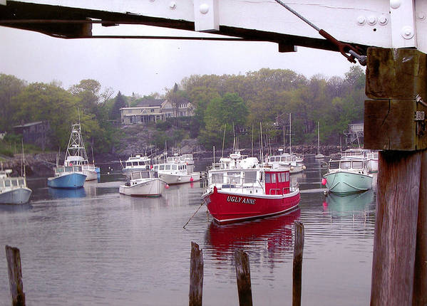 Boats Poster featuring the photograph Perkins Cove by Peter Williams